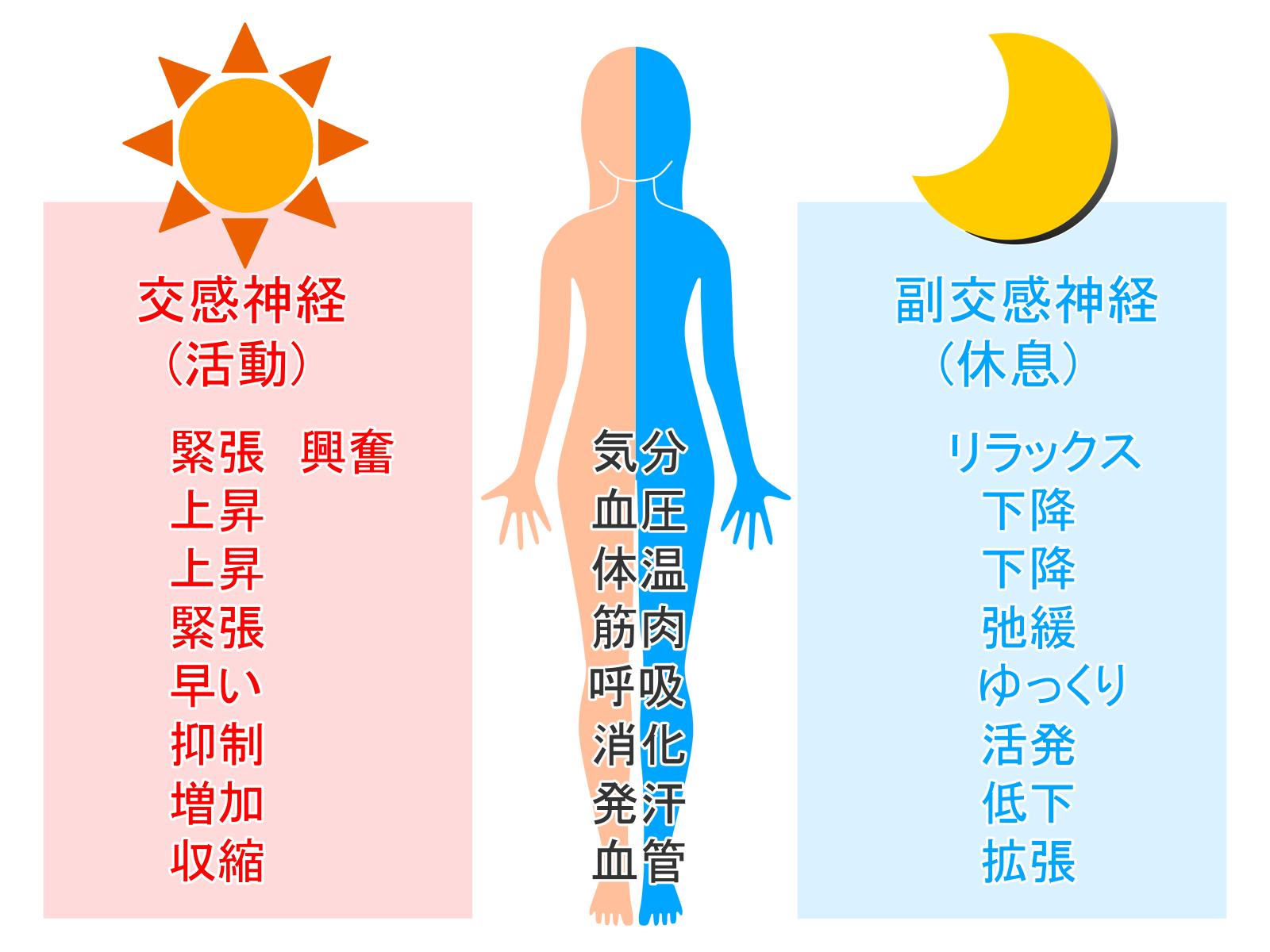沖縄 自律神経の乱れ